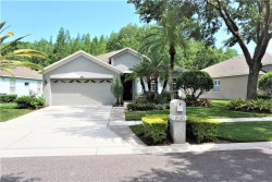 Photo of 19125 Chemille Drive, LUTZ, FL 33558 (MLS # T3244020)