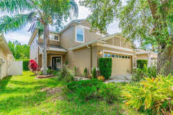 Photo of 3141 Whitley Bay Court, LAND O LAKES, FL 34638 (MLS # T3244082)