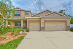 Photo of 3450 Marmalade Court, LAND O LAKES, FL 34638 (MLS # T3245452)