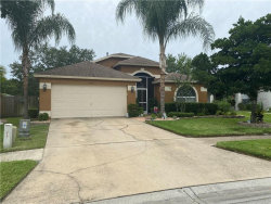 Photo of 4662 Roundview Court, LAND O LAKES, FL 34639 (MLS # T3246084)