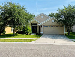 Photo of 18543 Dajana Avenue, LAND O LAKES, FL 34638 (MLS # T3246176)