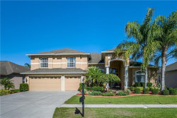 Photo of 20919 Cedar Bluff Place, LAND O LAKES, FL 34638 (MLS # T3246563)