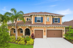 Photo of 18024 Woodland View Drive, LUTZ, FL 33548 (MLS # T3246879)