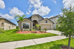 Photo of 11856 Thicket Wood Drive, RIVERVIEW, FL 33579 (MLS # T3247939)