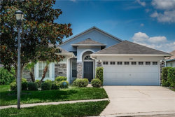 Photo of 11108 Rodeo Lane, RIVERVIEW, FL 33579 (MLS # T3249579)