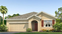 Photo of 13914 Smiling Daisy Place, RIVERVIEW, FL 33579 (MLS # T3249582)
