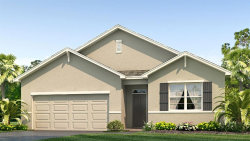 Photo of 11710 Miracle Mile Drive, RIVERVIEW, FL 33578 (MLS # T3249649)