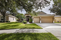 Photo of 5915 Tealwater Place, LITHIA, FL 33547 (MLS # T3250850)