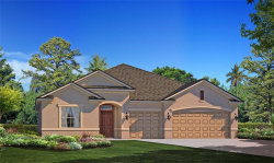 Tiny photo for 12426 Brick Cobblestone Drive, RIVERVIEW, FL 33579 (MLS # T3250898)