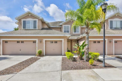Photo of 6206 Parkside Meadow Drive, TAMPA, FL 33625 (MLS # T3251129)