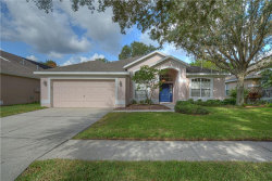 Photo of 5917 Tealwater Place, LITHIA, FL 33547 (MLS # T3251369)