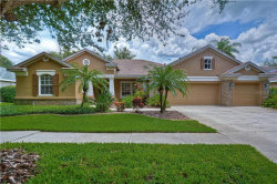 Photo of 15208 Merlinpark Place, LITHIA, FL 33547 (MLS # T3251383)