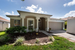 Photo of 13005 Early Run Lane, RIVERVIEW, FL 33578 (MLS # T3251408)