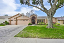 Photo of 2719 Brianholly Drive, VALRICO, FL 33596 (MLS # T3251644)
