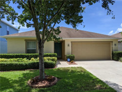 Photo of 11141 Running Pine Drive, RIVERVIEW, FL 33569 (MLS # T3251743)