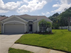 Photo of 4626 Gulfwinds Drive, LUTZ, FL 33558 (MLS # T3253202)