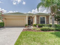 Photo of 13211 Tradition Drive, DADE CITY, FL 33525 (MLS # T3257550)