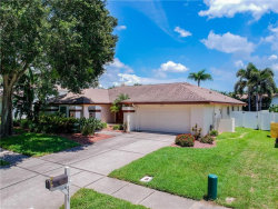 Photo of 2325 Stag Run Boulevard, CLEARWATER, FL 33765 (MLS # T3257855)