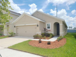 Photo of 10259 Geese Trail Circle, SUN CITY CENTER, FL 33573 (MLS # T3258348)