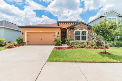 Photo of 11162 Spring Point Circle, RIVERVIEW, FL 33579 (MLS # T3258977)