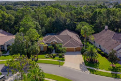 Photo of 10503 Greensprings Drive, TAMPA, FL 33626 (MLS # T3259152)
