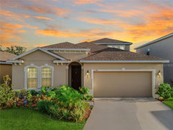 Photo of 12144 Ledbury Commons Drive, GIBSONTON, FL 33534 (MLS # T3262767)