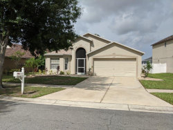 Photo of 12827 Lake Vista Drive, GIBSONTON, FL 33534 (MLS # T3264103)