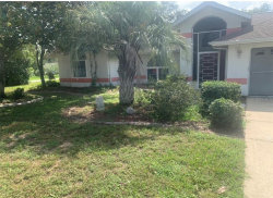 Photo of 13378 Lawrence Street, SPRING HILL, FL 34609 (MLS # T3264224)