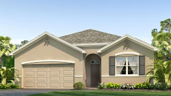 Photo of 2889 Living Coral Drive, ODESSA, FL 33556 (MLS # T3265142)