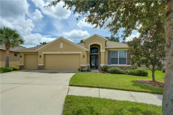 Photo of 11132 Wembley Landing Drive, LITHIA, FL 33547 (MLS # T3265562)
