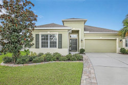 Photo of 17533 Buckingham Garden Drive, LITHIA, FL 33547 (MLS # T3265713)