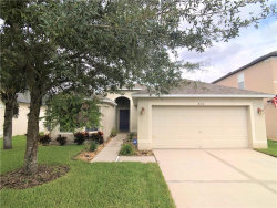 Photo of 8124 Tar Hollow Drive, GIBSONTON, FL 33534 (MLS # T3265717)