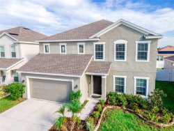 Photo of 12143 Ledbury Commons Drive, GIBSONTON, FL 33534 (MLS # T3267577)