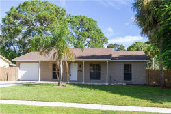 Photo of 8413 Woodhurst Drive, TAMPA, FL 33615 (MLS # T3268688)