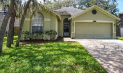 Photo of 4137 Moreland Drive, VALRICO, FL 33596 (MLS # T3275424)