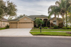 Photo of 2919 Marble Crest Drive, LAND O LAKES, FL 34638 (MLS # T3275598)