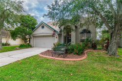 Photo of 14512 Thornfield Court, TAMPA, FL 33624 (MLS # T3276359)