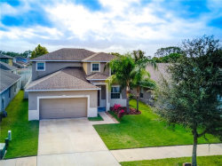 Photo of 10515 Sleepy Orange Court, RIVERVIEW, FL 33578 (MLS # T3277435)