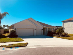 Photo of 11917 Quack Grass Court, RIVERVIEW, FL 33579 (MLS # T3277451)