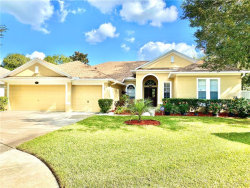 Photo of 3835 Misty Landing Drive, VALRICO, FL 33594 (MLS # T3277464)