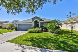 Photo of 11721 Pure Pebble Drive, RIVERVIEW, FL 33569 (MLS # T3277833)