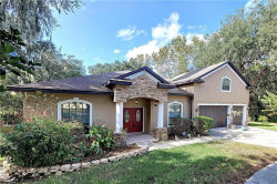Photo of 8849 Alafia Cove Drive, RIVERVIEW, FL 33569 (MLS # T3278036)