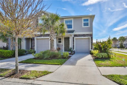 Photo of 10405 Yellow Spice Court, RIVERVIEW, FL 33578 (MLS # T3278120)