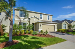 Photo of 11420 Emerald Shore Drive, RIVERVIEW, FL 33579 (MLS # T3278142)