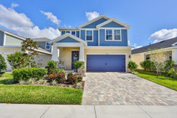 Photo of 5504 Silver Sun Drive, APOLLO BEACH, FL 33572 (MLS # T3278515)