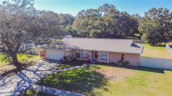Photo of 1621 Featherband Drive, VALRICO, FL 33594 (MLS # T3282624)