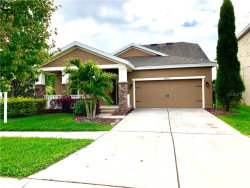 Photo of 5936 Jasper Glen Drive, LITHIA, FL 33547 (MLS # T3282941)