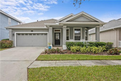 Photo of 5008 Torrey Hills Lane, LUTZ, FL 33558 (MLS # T3284707)