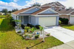 Photo of 11316 Palm Island Avenue, RIVERVIEW, FL 33569 (MLS # T3284875)