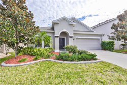 Photo of 12114 Whistling Wind Drive, RIVERVIEW, FL 33569 (MLS # T3285122)
